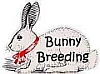 Rabbit Rescue Bunny Breeding
